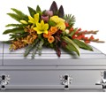 Island Memories Casket Spray in Fort Worth TX TCU Florist