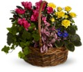 Blooming Garden Basket in Tulsa OK Burnett's Flowers & Designs