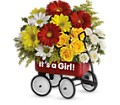 Baby's Wow Wagon by Teleflora - Girl in Middle Village NY Creative Flower Shop