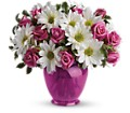Teleflora's Pink Daisy Delight in Bowmanville ON Bev's Flowers