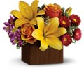 Teleflora's Full of Laughter in Jacksonville FL Deerwood Florist