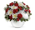 Teleflora's Snowball Surprise Bouquet in Alexandria MN Anderson Florist & Greenhouse