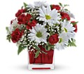 Red And White Delight by Teleflora in Elizabeth City NC Jeffrey's Greenworld & Florist, Inc.