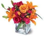 Teleflora's Uniquely Chic Bouquet in Hilton NY, Justice Flower Shop