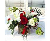 Enchanted Holiday Bouquet in Lake Forest CA, Cheers Floral Creations