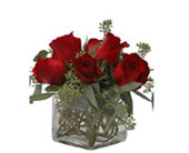 Walter Knoll's Six Roses in a Cube Vase Bouquet in St. Louis MO, Walter Knoll Florist