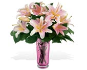 Teleflora's Grand Lily Bouquet by Galway in St Augustine FL, Flower Works
