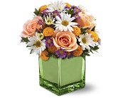 Teleflora's Spring Spirit Bouquet in Philadelphia PA, Young's Florist