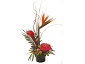 Walter Knoll's Tropical Expressions Bouquet in St. Louis MO, Walter Knoll Florist