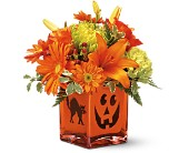 Teleflora's Creepy Cube Bouquet in Christiansburg VA, Gates Flowers & Gifts