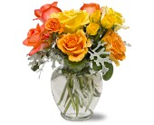 Butterscotch Roses in San Clemente CA, Beach City Florist