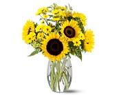 Teleflora's Sunflower Splash in Manalapan NJ, Rosie Posies