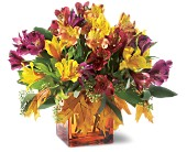 Teleflora's Autumn Alstroemeria Bouquet in Huntley IL, Huntley Floral