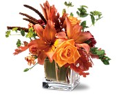 Teleflora's Orange Spice in Austin TX, Ali Bleu Flowers
