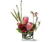 Teleflora's Modern Medley in Little Rock AR, The Empty Vase
