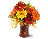 Autumn Gerberas, picture