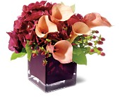 Teleflora's Calla Classique in Gautier MS, Flower Patch Florist & Gifts