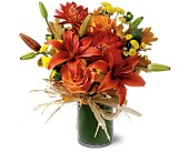 Orange Zest in San Clemente CA, Beach City Florist