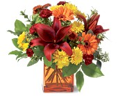 Teleflora's Autumn Awe in flower shops MD, Flowers on Base