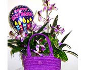 GP29B ''Field of Orchids'' Birthday Ivy Planter in Oklahoma City OK, Array of Flowers & Gifts