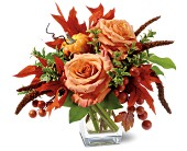 Petals and Pumpkin in San Clemente CA, Beach City Florist