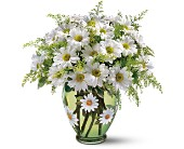 Teleflora's Crazy for Daisies Bouquet in Murrieta CA, Michael's Flower Girl