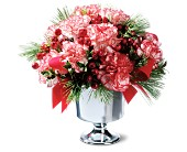 Peppermint Carnations in Grand Falls/Sault NB, Grand Falls Florist LTD