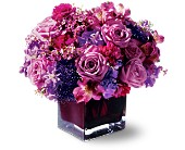Teleflora's Plum Paradise in Bothell WA, The Bothell Florist
