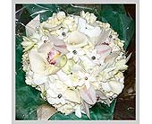 White Hydrangea, cynbidium orchids, stephanotis & crystals in Tuckahoe, New Jersey, Enchanting Florist & Gift Shop