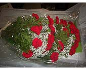 24 Red Carnations in Markham ON, Freshland Flowers