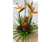 Tropical Love in The Villages FL, The Villages Florist Inc.