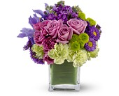 Teleflora's Mod About You in Vienna VA, Caffi's Florist