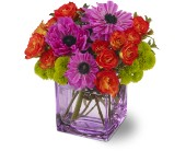 Teleflora's Brilliant Blossoms in San Clemente CA, Beach City Florist