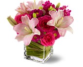 Teleflora's Posh Pinks in Windsor, Ontario, Flowers By Freesia