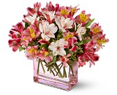 Teleflora's Always Alstroemeria in San Clemente CA, Beach City Florist