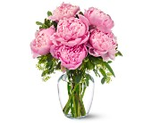 Peonies in Pink in Redford, Michigan, Kristi's Flowers & Gifts