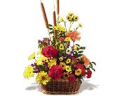 Crazy for Cattails in Paris ON, McCormick Florist & Gift Shoppe