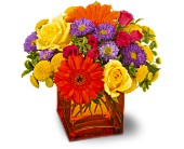 Teleflora's Another Year Bolder in New Glasgow NS, McKean's Flowers Ltd.