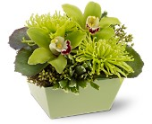 Go Green in North Manchester IN, Cottage Creations Florist & Gift Shop