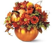 Teleflora's Petite Pumpkin Bouquet in Salt Lake City UT, Especially For You