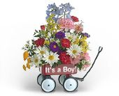 Baby's First Wagon (Boy) in Jersey City NJ, Entenmann's Florist