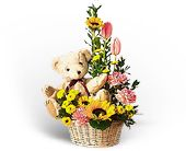 Basket of Bear with Blooms in Silver Spring MD, Colesville Floral Design