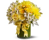 Lemon Aid in Friendswood TX, Lary's Florist & Designs LLC
