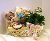 Welcome Home Baby Basket in Kirkland WA, Fena Flowers, Inc.