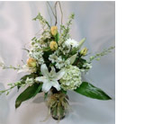 Golden Delight in Naples FL, Gene's 5th Ave Florist