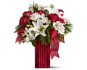 Holiday Spirit in Plano TX, Plano Florist