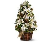 Luxurious Lily Tree in Syracuse NY, St Agnes Floral Shop, Inc.
