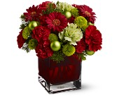 Teleflora's No�l Chic in San Bruno CA, San Bruno Flower Fashions