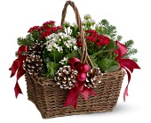 Christmas Garden Basket in Wynantskill NY, Worthington Flowers & Greenhouse