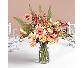 Peach Gerbera Daisies, Orchids, and Calla Lilies Centerpiece in Abington MA, The Hutcheon's Flower Co, Inc.